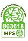 5981_cert_MPS-GAP_2018.pdf