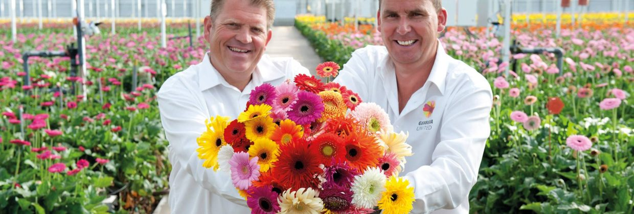Dick en WP van Gerbera United